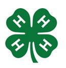 4-H Club design ideas